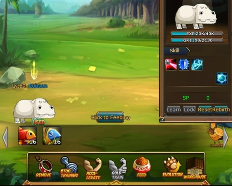 4. feed pet di anime pirate king