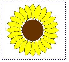 12. bunga matahari telah diwarnai