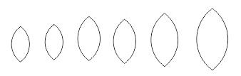 9. daun coreldraw